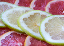 Fruit miks Stock Images