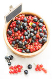 Fruit mix Royalty Free Stock Images