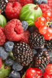Fruit mix, berry Stock Images