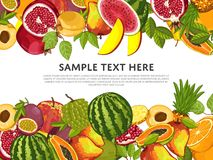 Fruit mix with leaves on white background Royalty Free Stock Images