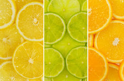 Fruit mix of lemon, lime and orange fruit. Texture close-up royalty free stock photography