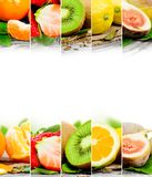 Fruit mix Royalty Free Stock Photography