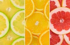 Fruit Mix of sweetie fruit, orange and grapefruit Royalty Free Stock Image