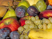 Fruit Mixed Royalty Free Stock Photos