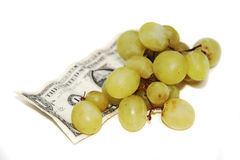 Fruit and money Royalty Free Stock Photography