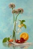 Fruit mood Stock Photography