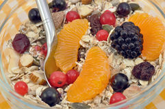 Fruit Muesli Stock Images