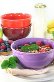 Fruit Muesli Royalty Free Stock Photography