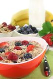 Fruit Muesli Royalty Free Stock Image