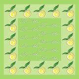Fruit napkin Stock Image