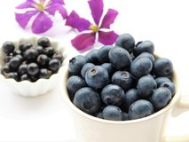 Fruit, Natural Foods, Blueberry, Berry Stock Photo