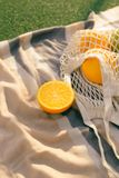 Fruit net bag on the plaid in the field.  royalty free stock images
