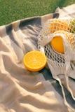 Fruit netto zak op de plaid op het gebied royalty-vrije stock afbeeldingen
