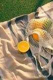 Fruit netto zak op de plaid op het gebied stock foto's