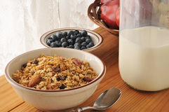 Fruit and nut granola Royalty Free Stock Photography