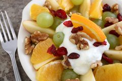 Fruit and nut salad with yogurt Stock Image