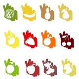 Fruit op een kleurenbackgrou Royalty-vrije Stock Foto's