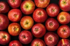 Fruit op zwarte Royalty-vrije Stock Foto's