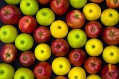 Fruit op zwarte Royalty-vrije Stock Fotografie