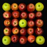 Fruit op zwarte Stock Foto