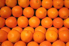 Fruit - Orange. Orange in the middle of many oranges Royalty Free Stock Image