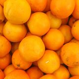 Fruit orange Photos stock