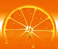 Fruit orange frais tropical Juice Modern Background Illustration Illustration de Vecteur