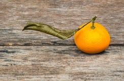 Fruit orange mûr Photos stock