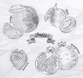Fruit orange, plum, strawberry, pomegranate Stock Images