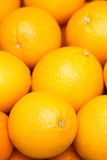 Fruit  oranges  fresh Royalty Free Stock Image
