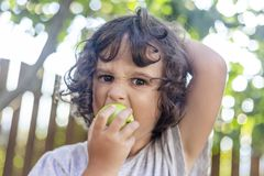 Little Girl with curly hair biting from an green apple. In a fruit orchard with a wooden fence with the sun behind, a smiley little girl is biting an green apple royalty free stock photos