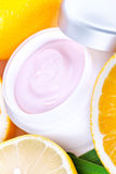 Fruit organic nutrition facial cream Stock Photography