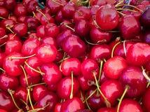 Fruit organique aux agriculteurs Image stock
