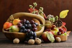 Fruit organische oogst stock foto