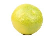 Fruit oroblanco Stock Image