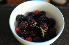 Fruit from our garden. Rapsberries and blackberries are seasonal fruit from our garden Stock Photos