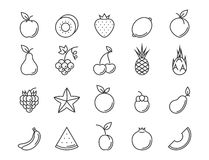 Fruit outline icon set. Vector line illustration for your design Stock Photo