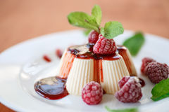 Fruit Panna Cotta Stock Image