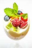 Fruit Parfait IV Royalty Free Stock Photos