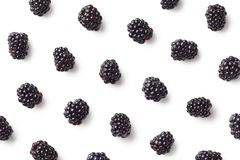 Fruit pattern of blackberries royalty free stock images