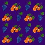 Fruit pattern orange and grapes vector illustration