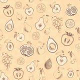 Fruit pattern Stock Image