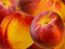 Fruit a peach and apricot hybrid Royalty Free Stock Photos