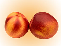 Fruit a peach and apricot hybrid Royalty Free Stock Image