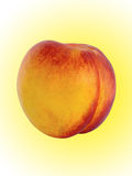 Fruit a peach and apricot hybrid Royalty Free Stock Images