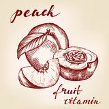 Fruit peach set hand drawn  Royalty Free Stock Images