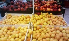 Fruit peaches, apricots Royalty Free Stock Photography