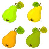 Fruit, pears Stock Image