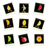 Fruit on photo frame color vector Stock Image