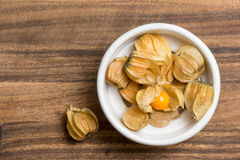 Fruit Physalis Stock Photography